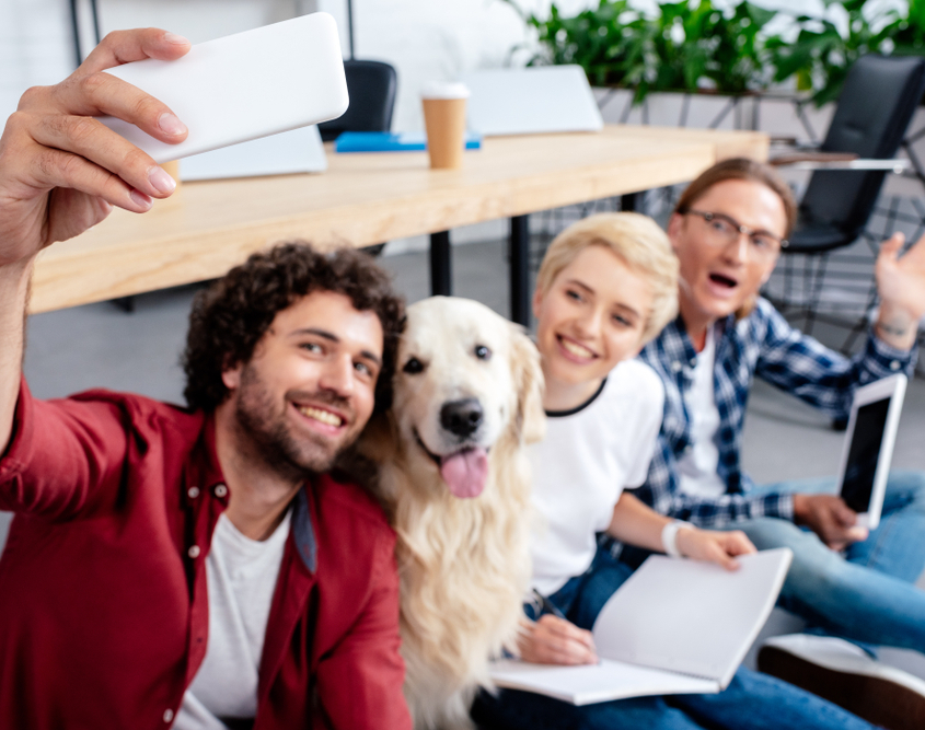 Pets in the Workplace Make Employees Happier and More Productive